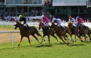 barbados-horseracing